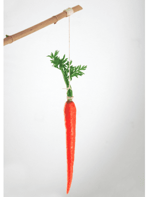 Does it take a carrot or a stick to produce a great garden?