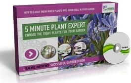 The Best Kept Secret Of The Plant World (and how to avoid wasting money at the garden centre)…
