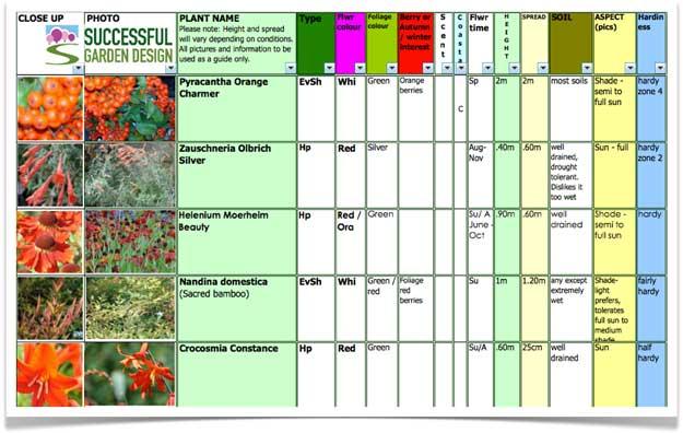 Garden Plant Selection – Oranges for October