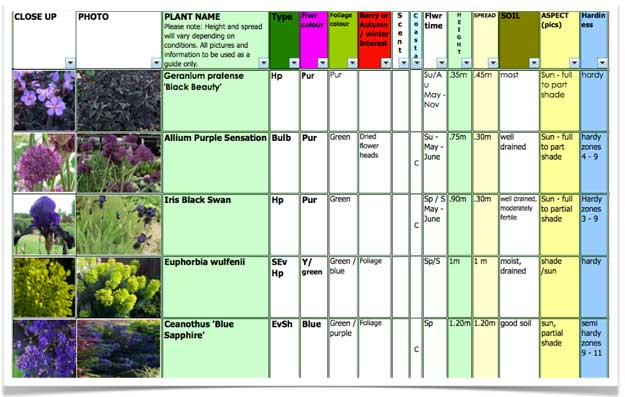 Plant Selection – Magic in May
