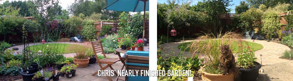 Small Garden Case Study – Christine's Design