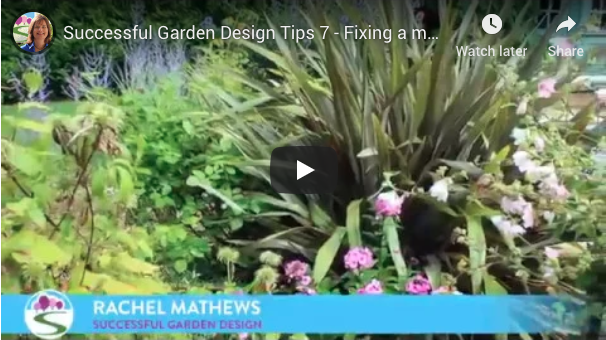 Successful Garden Design Tips – Fixing a messy border
