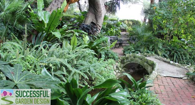 Evergreen tropical planting