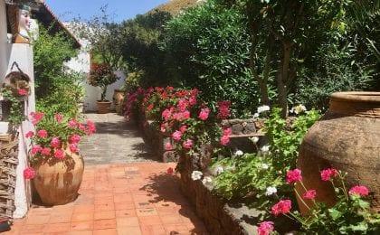 Sicilian Garden