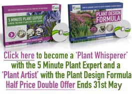 EASTER Plant Design Expert Offer
