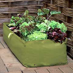Haxnicks Multipurpose Reusable Growbag Planter