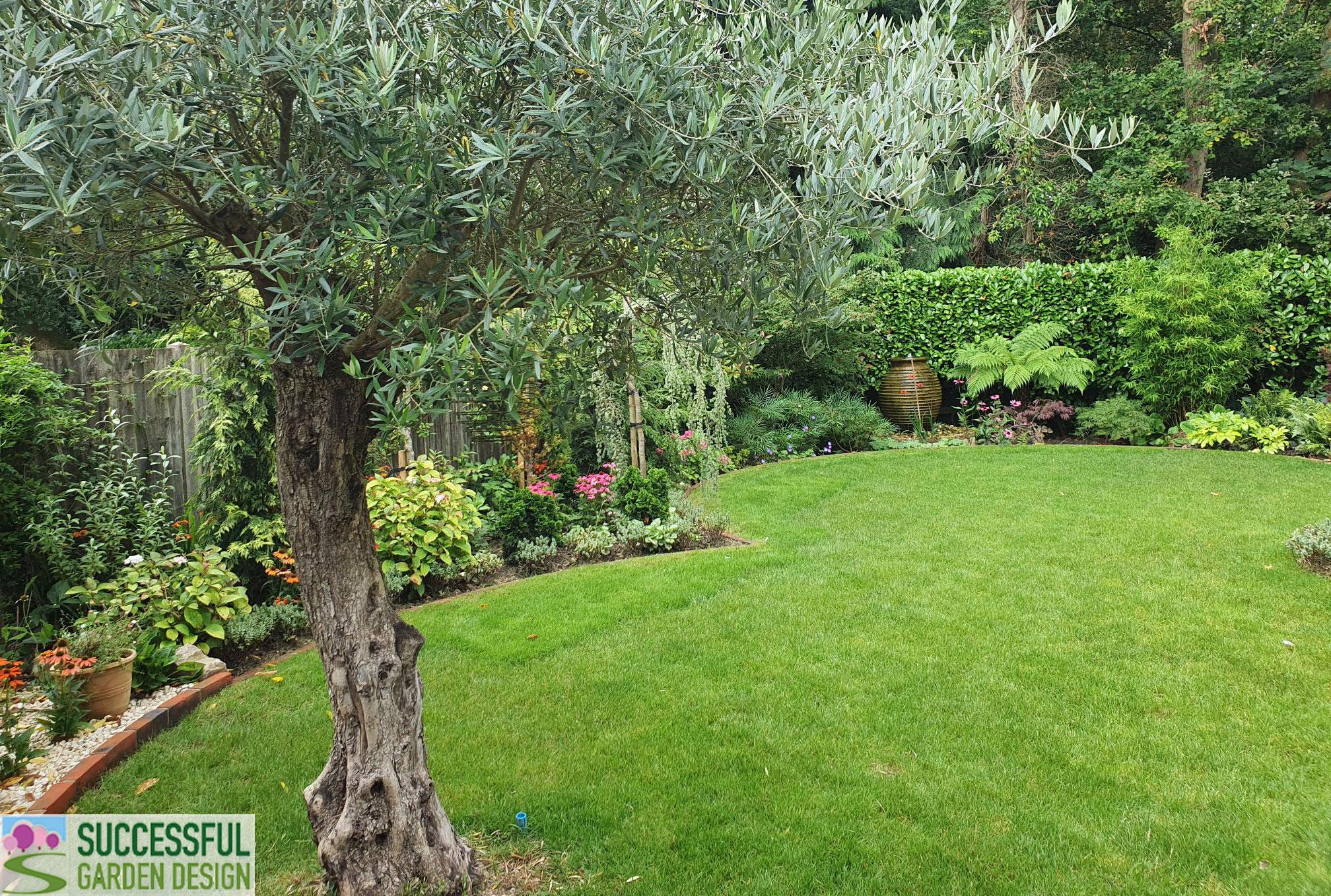 Frances' Glorious Garden – Wide Garden Re-Design